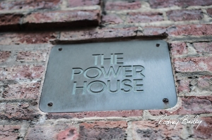 028_the_powerhouse_georgetown_event_rodneybailey_rise_events_dc_2-5-13 (2)